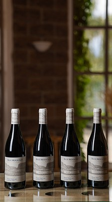 Pinot Noir 4 Pack - Sold Out